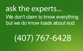 Ask the experts: we don't claim to know everything but we do know loads about sod.