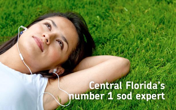 Florida's number 1 sod expert