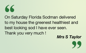 On Saturday Florida Sodman delivered to my house the greenest healthiest and best looking sod I have ever seen. Thank you very much! Mrs S Taylor