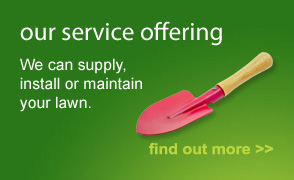 Our service offering: we can supply install or maintain your lawn.