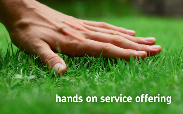 Hands on service offering